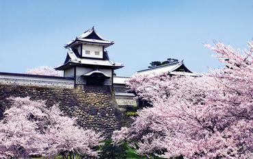 Kanazawa castle in spring fin
